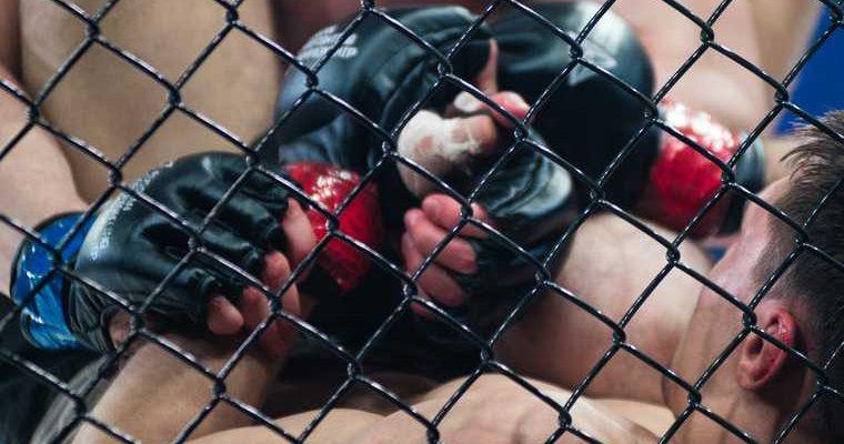 смешанные единоборства MMA