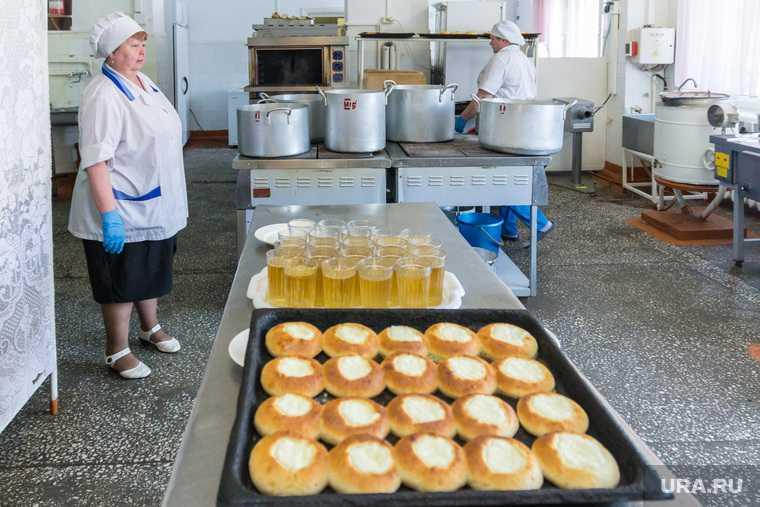 Курганская область школы будут кормить Единая Росси