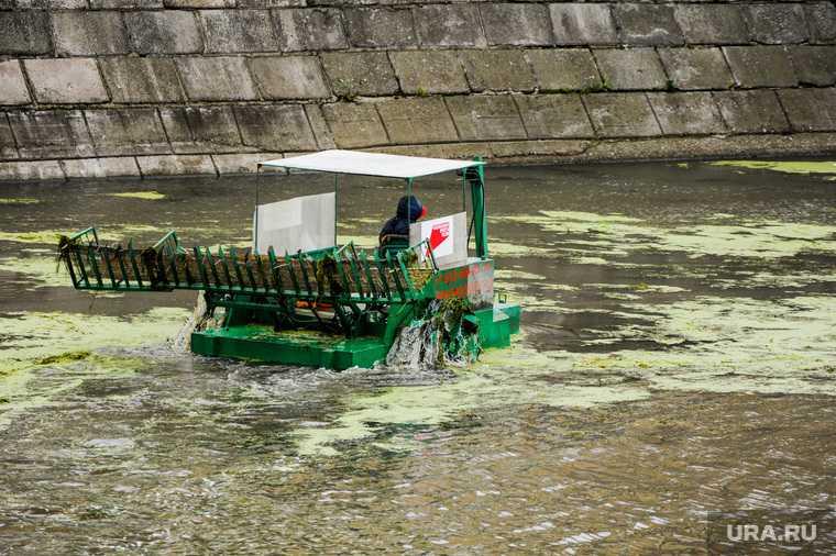 Челябинск река Миасс расчистка русло уголовное дело минэкологии