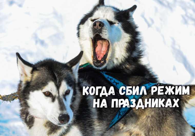инсайды Свердловская область слухи
