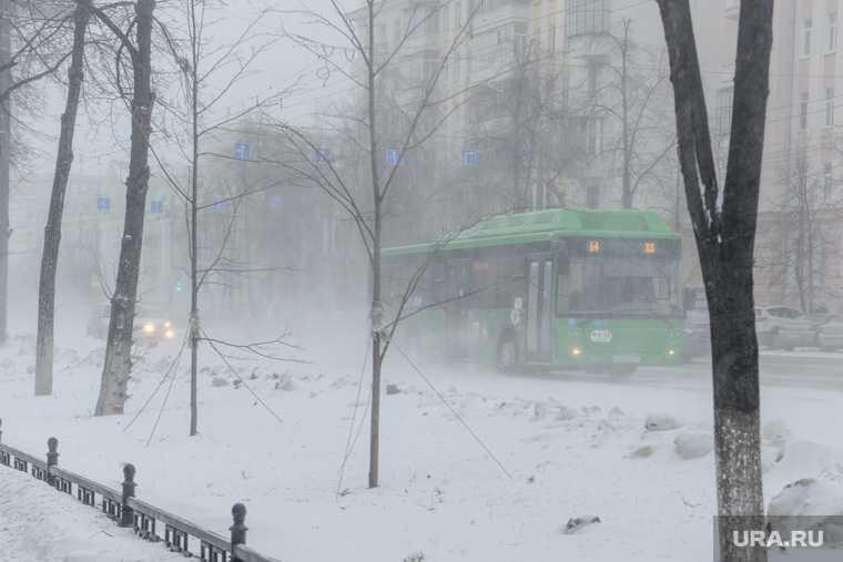 В Тюмени отменили автобусы в Курган