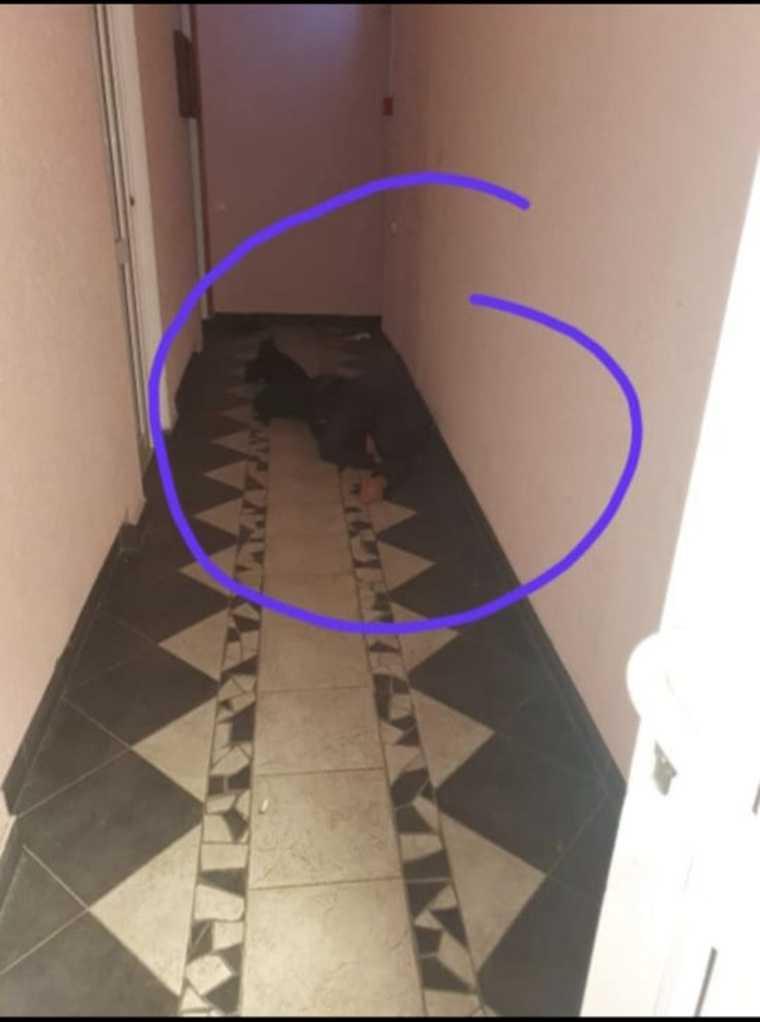В столице ЯНАО бомжи захватили торговое здание. Фото