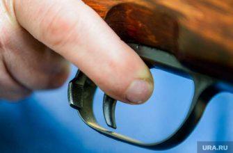 Стрельба волгоградская область подростки ранения стрельба